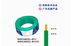 WDZ(A  B  C  D)-BYJ