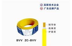 BVV  ZC-BVV