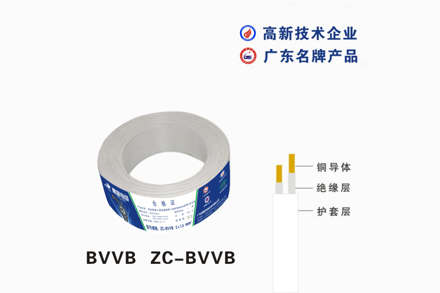 BVVB  ZC-BVVB